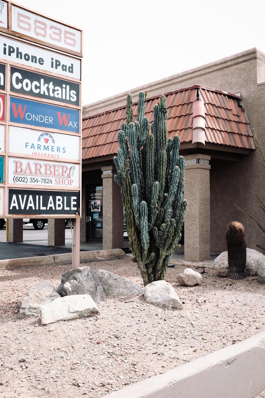 Day 10 - N. 16th St, Phoenix