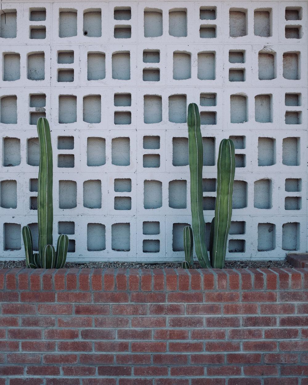 Day 10 - E Camelback Rd, Phoenix