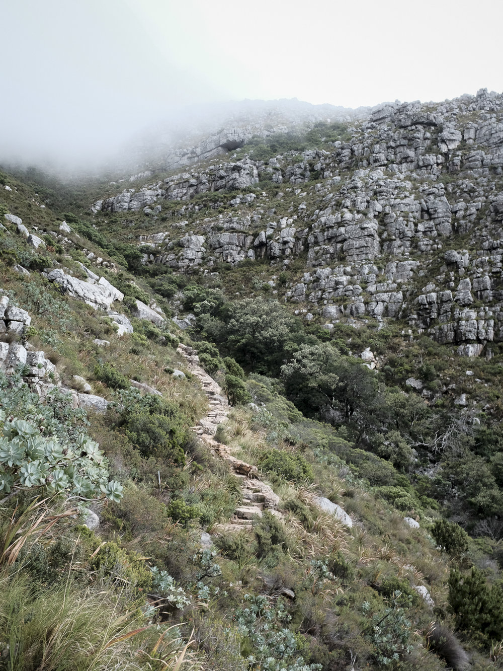 cape-town-south-africa-table-mountain-platteklip-gorge-hike-6.jpg