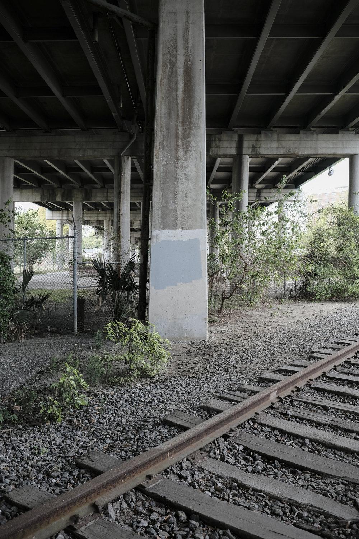 future-corridor-lowcountry-lowline-jared-bramblett-2018-37.jpg