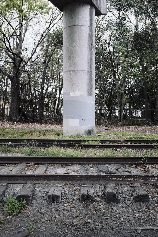 future-corridor-lowcountry-lowline-jared-bramblett-2018-8.jpg