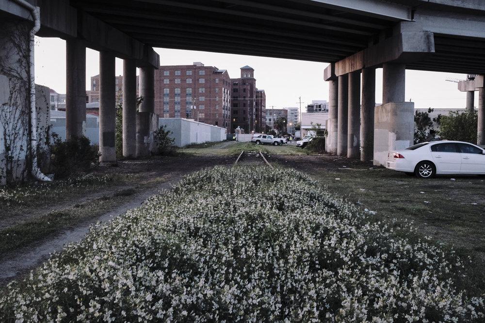 future-corridor-lowcountry-lowline-jared-bramblett-2018-33.jpg