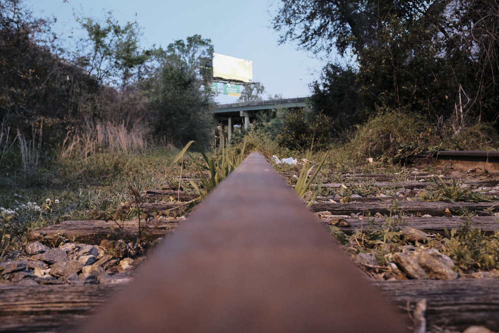 future-corridor-lowcountry-lowline-jared-bramblett-2018-19.jpg
