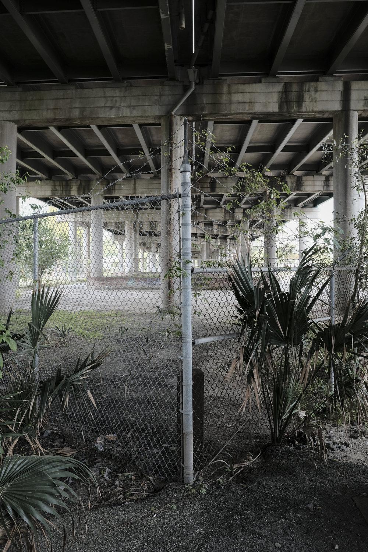 future-corridor-lowcountry-lowline-jared-bramblett-2018-38.jpg