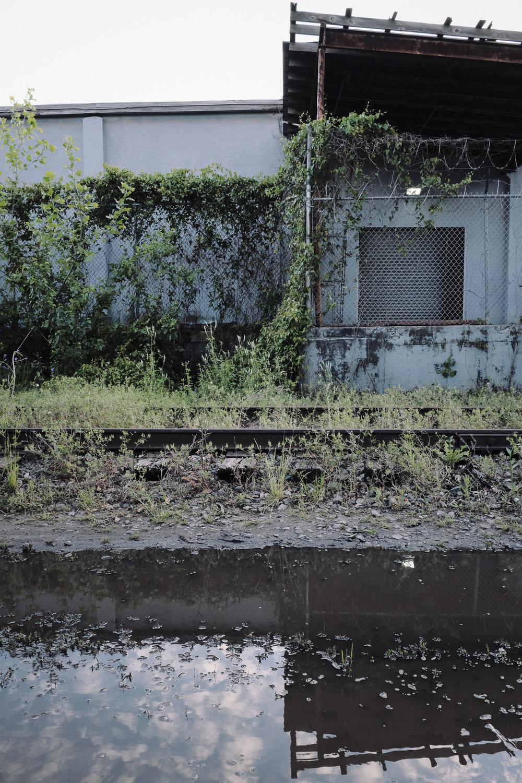 future-corridor-lowcountry-lowline-jared-bramblett-2018-49.jpg