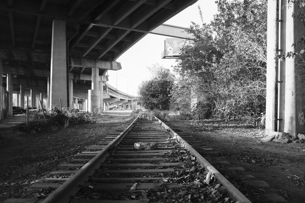 future-corridor-lowcountry-lowline-jared-bramblett-2018-20.jpg