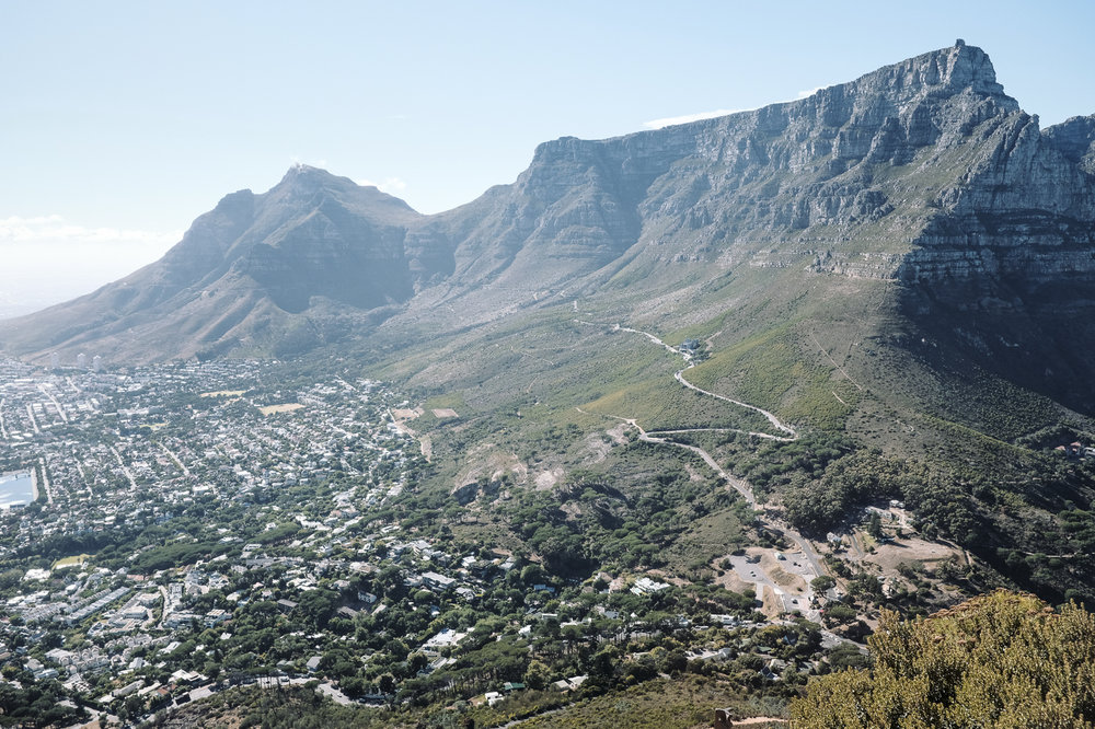 Table Mountain (from Lions Head)