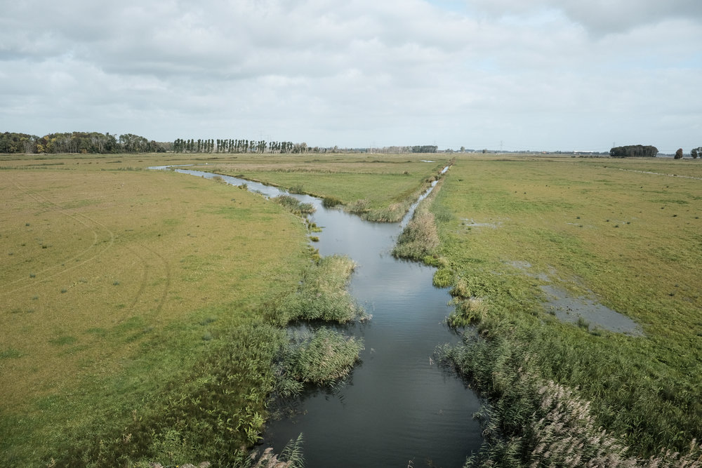 Constructed wetlands and flow channel, Noordwaard Polder Project