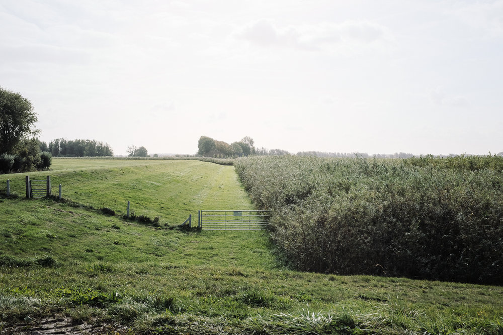 Dike, Noordwaard Polder Project