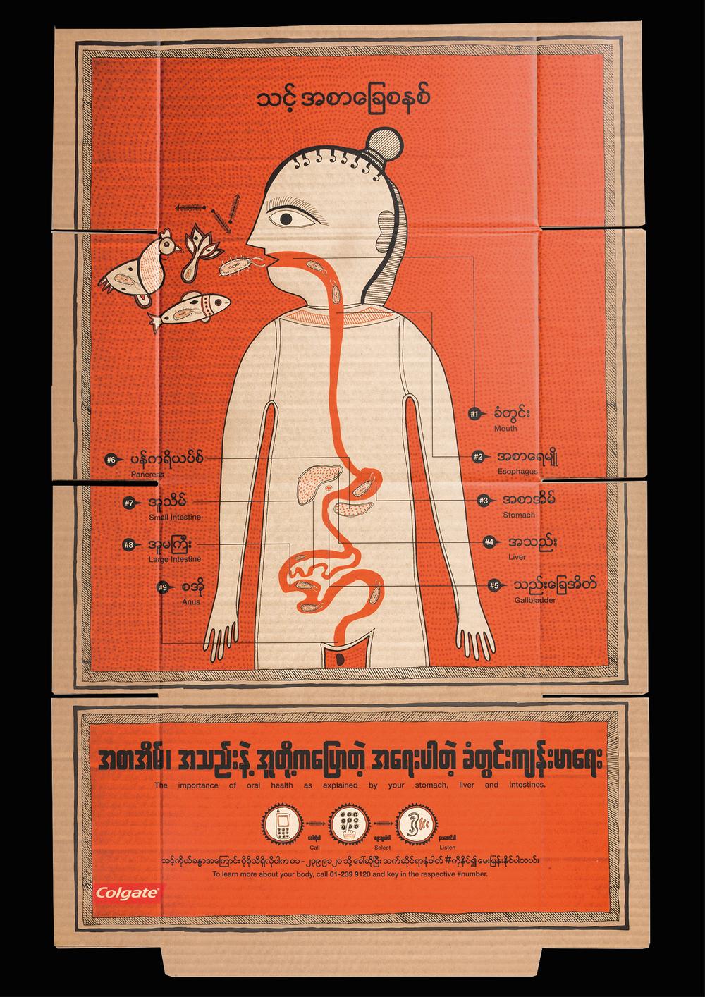 digestive-system-05.jpg