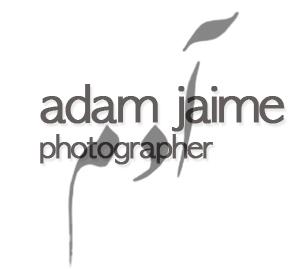 Adam Jaime Logo.jpg
