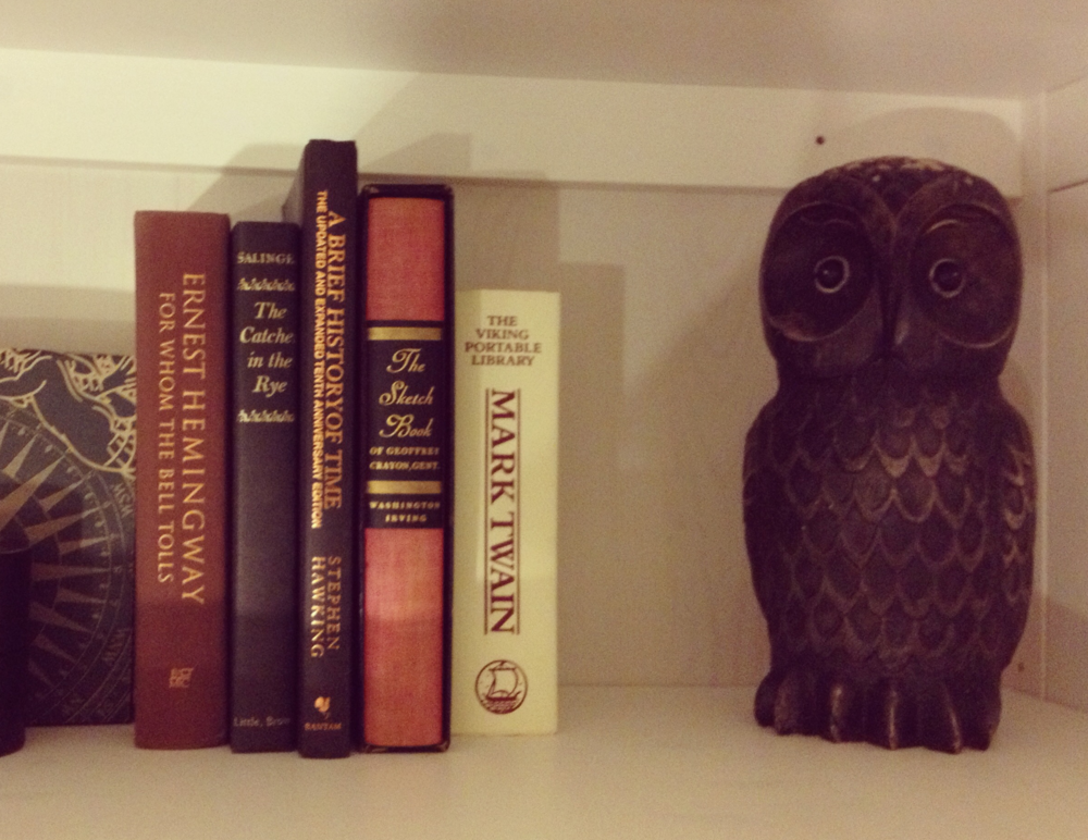 Forgive my poor photography, but how awesome is that owl?  Plus those books make me look smart...