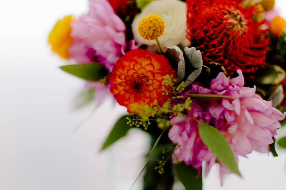 Blood orange, pink, purple, yellow, flower arrangement by Washington DC floral designer Kate Farrington of Rally & Root on Fortique