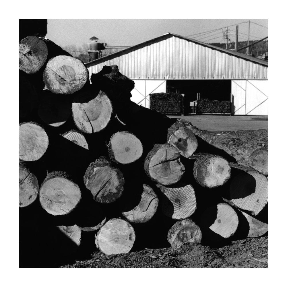 lumbar-yard-logs.jpg