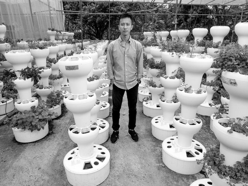 Darren Ho, Citizen Farm.