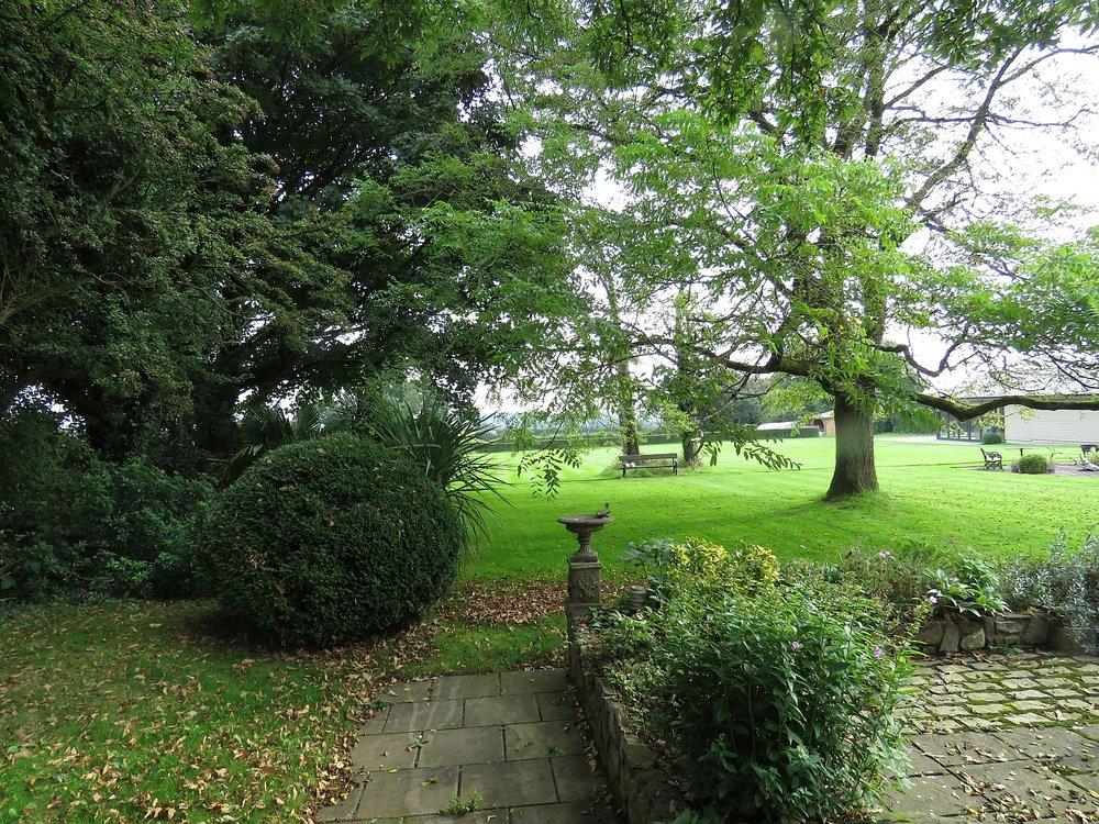 Back lawn