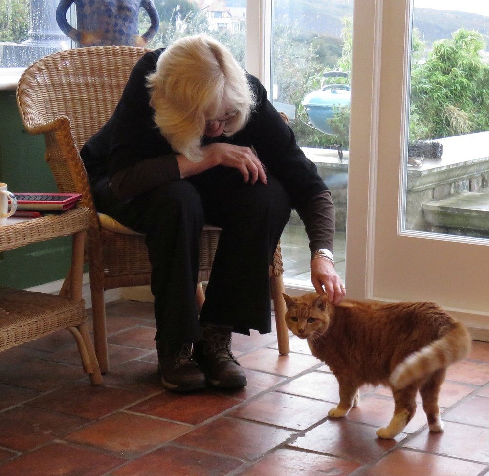 Time out with Dizzy, the Pentower cat