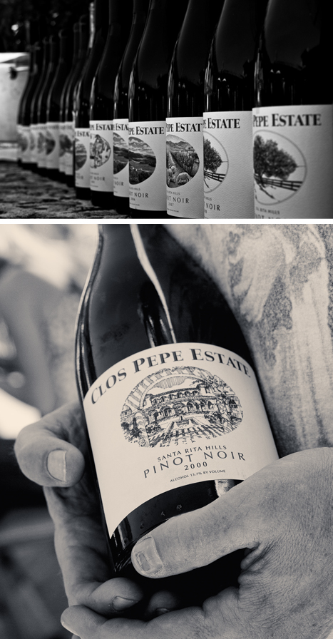 Until 2011, each vintage of Clos Pepe Estate Wine featured a new hand drawn sketch that focused on a different element of the property. The 2011 art will now be used for all future vintages.
