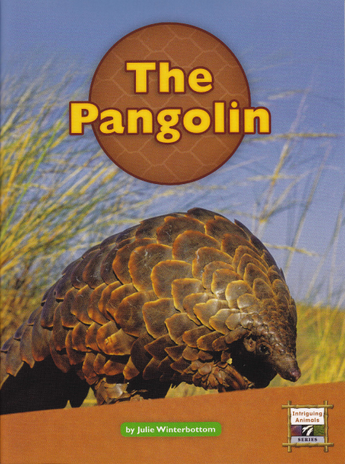 MORE BOOKS: Meet a pangolin and discover three new species.