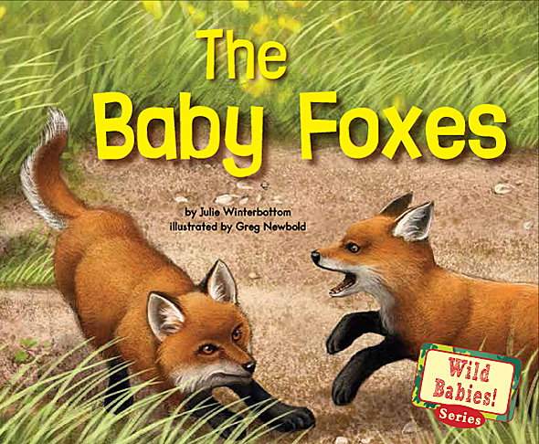 The Baby Foxes