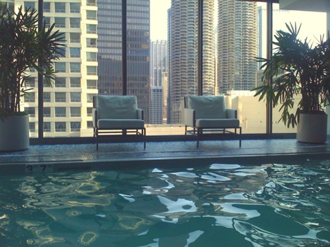 chicago hotel palomar poolside