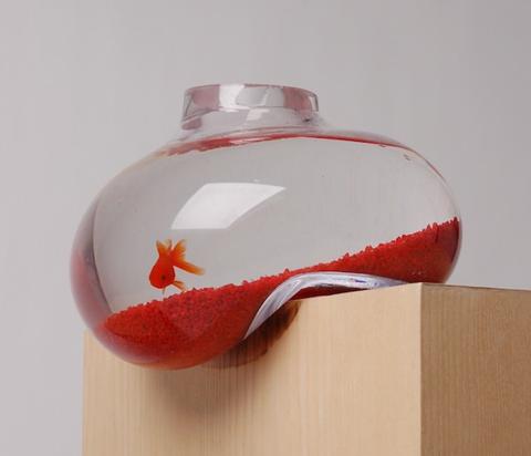 psalt bubble tank