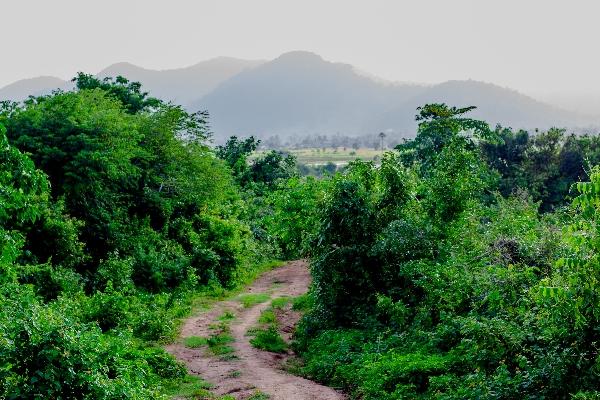 """""""Shalom Valley"""", Kep, Cambodia"""
