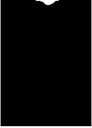 FFS_Logo_500.png
