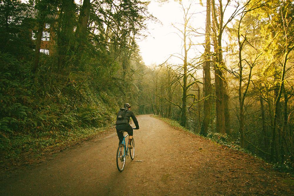 forest-grove1.jpg