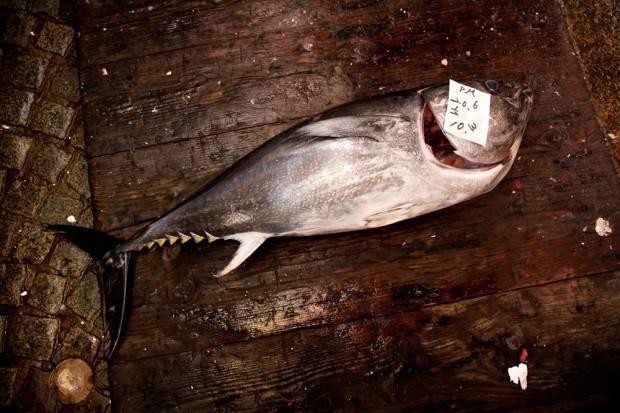 tsukiji_08-620x413.jpg