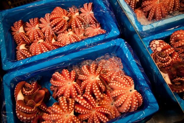 tsukiji_18-620x413.jpg