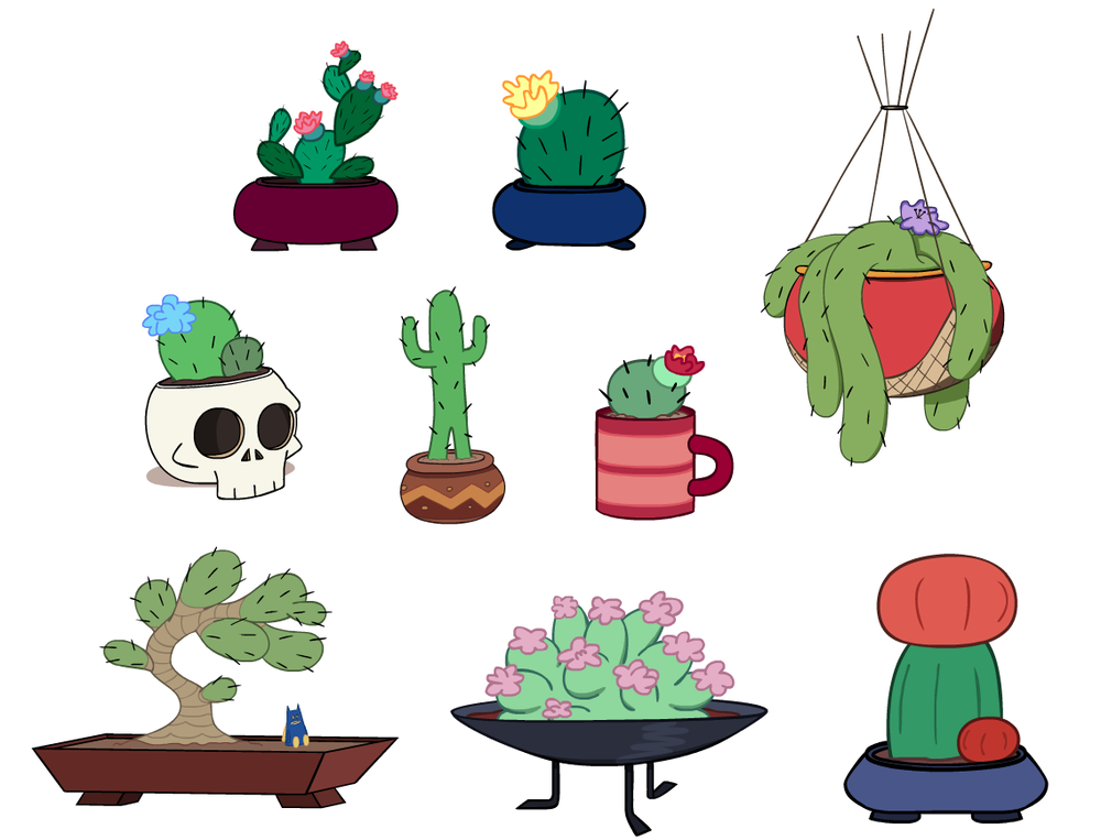 Assorted cactuses