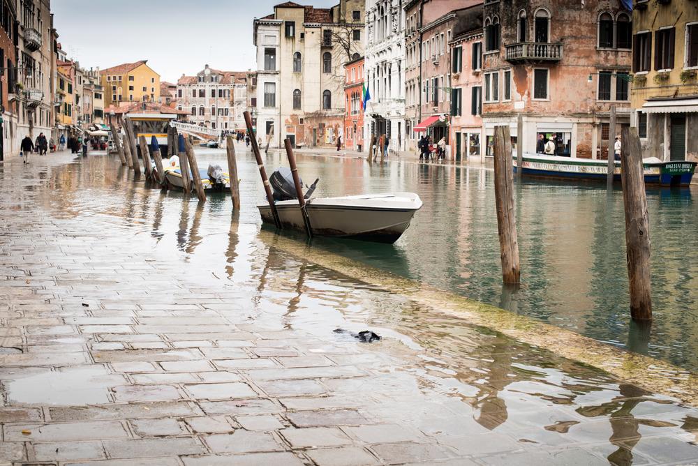 Venice 201412-31.jpg