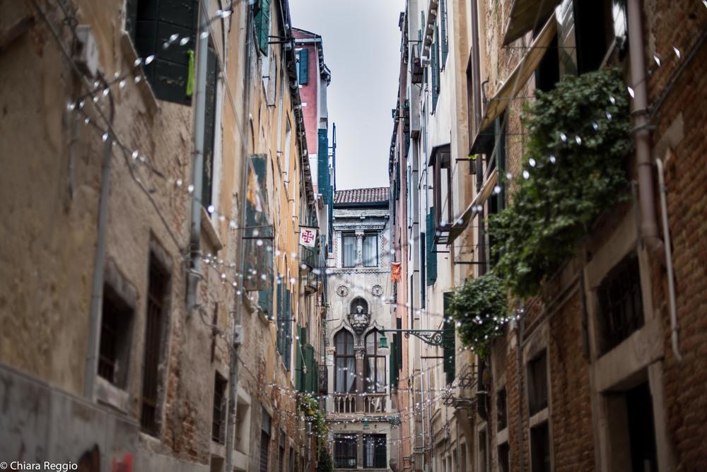 Venice 201412-32.jpg