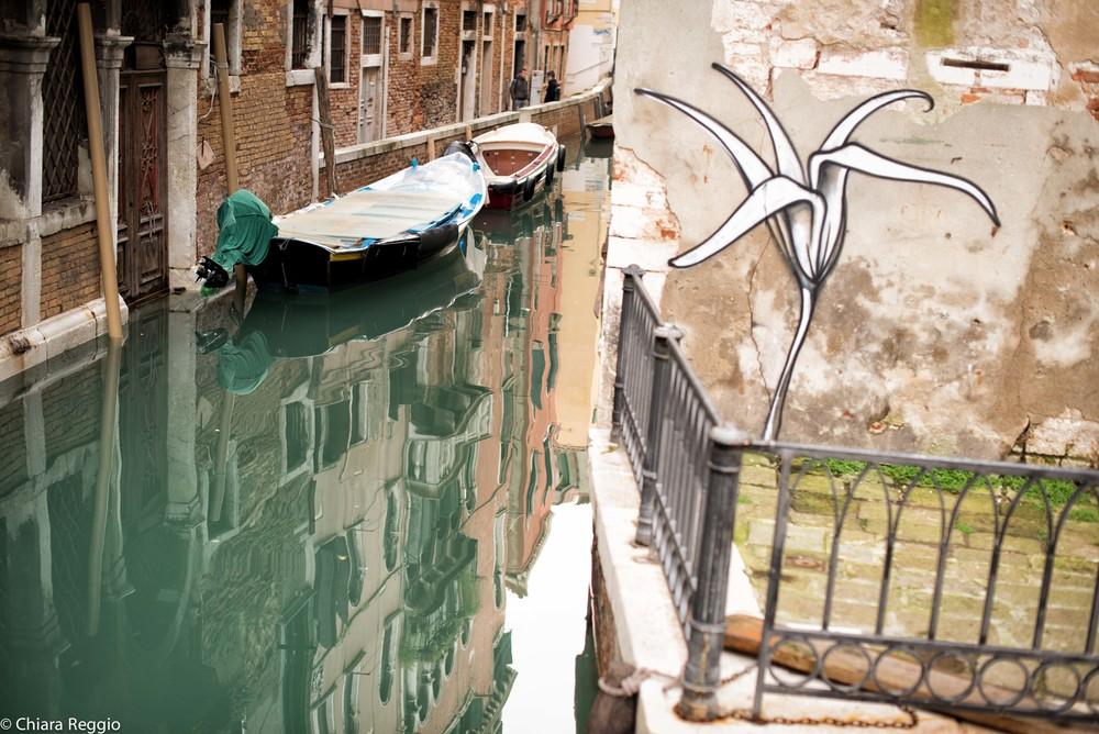 Venice 201412-40.jpg