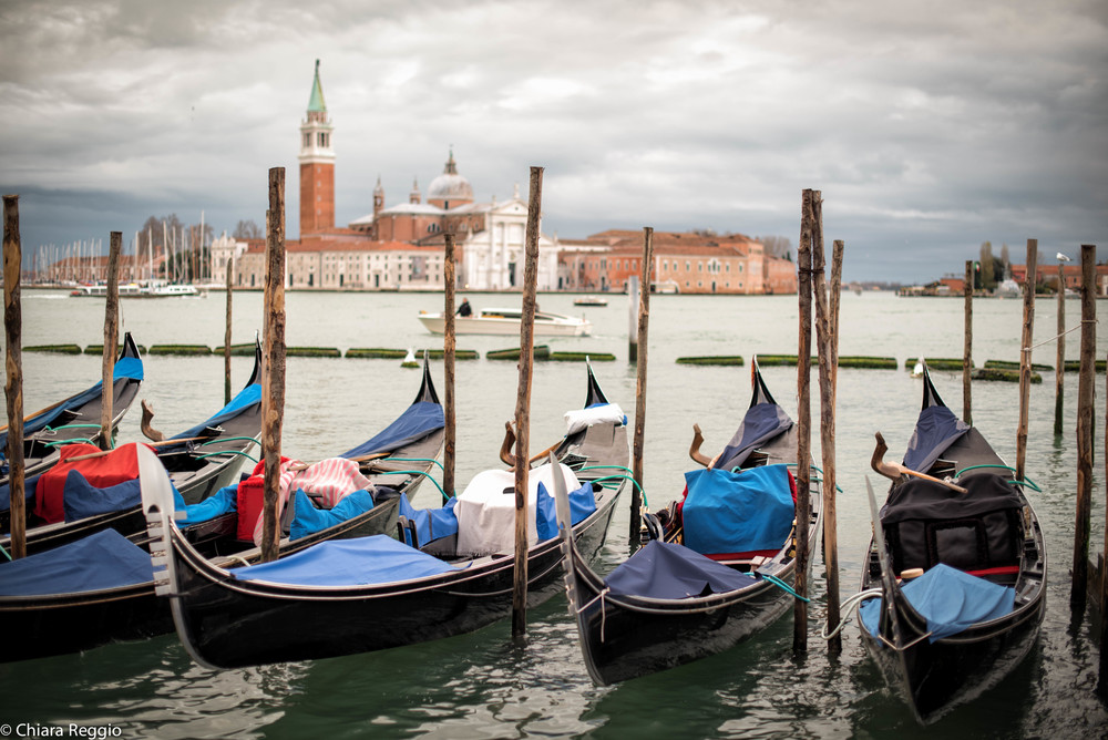 Venice 201412-52.jpg