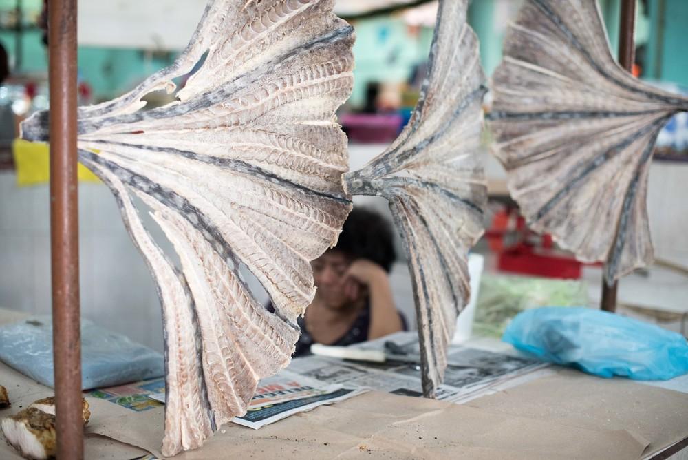 Merida, fish market