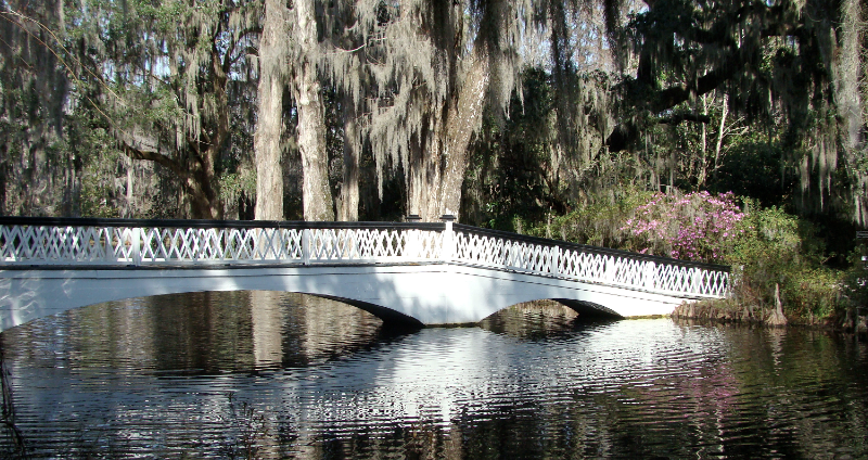 Magnolia-Plantation-Bridge-Cover.JPG