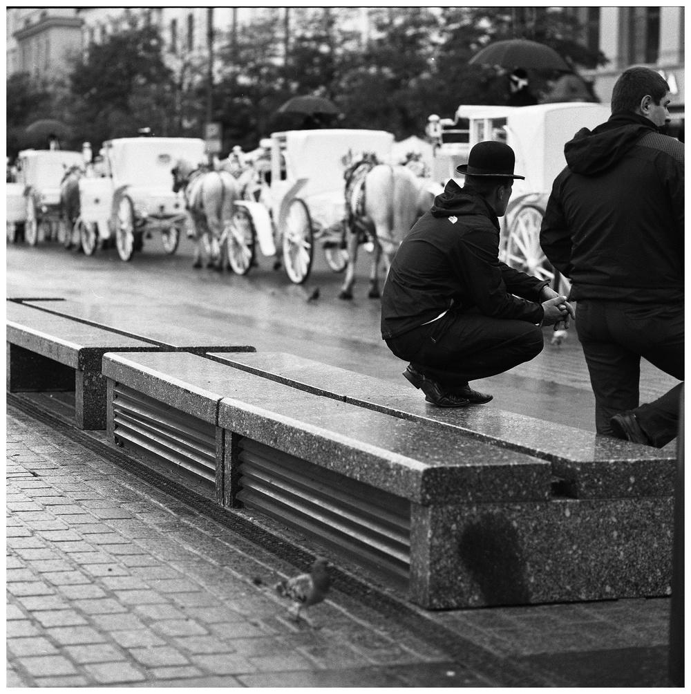 Hassel_BW_Kraków336.jpg