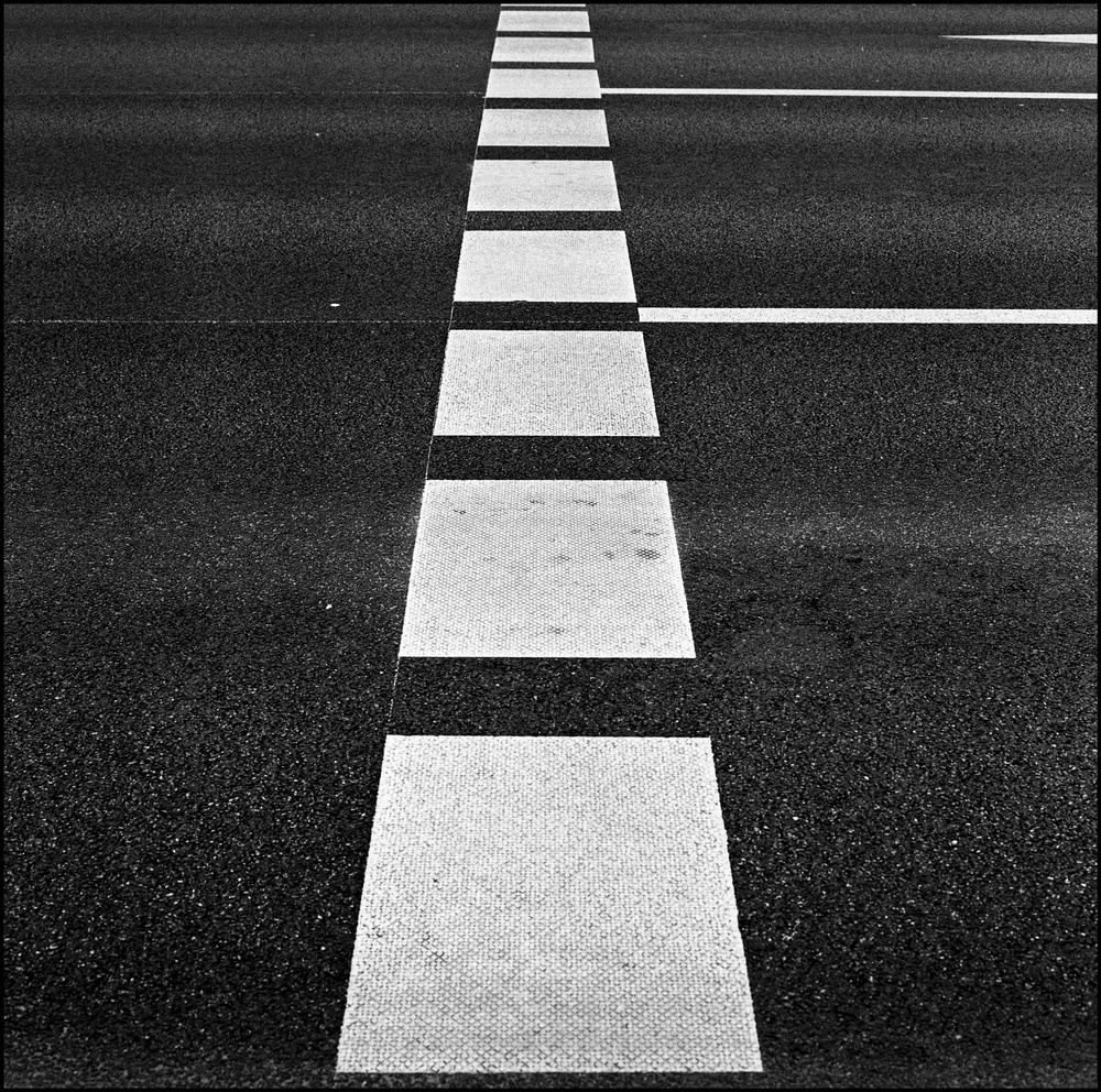 hasselblad_img251_Snapseed.jpg