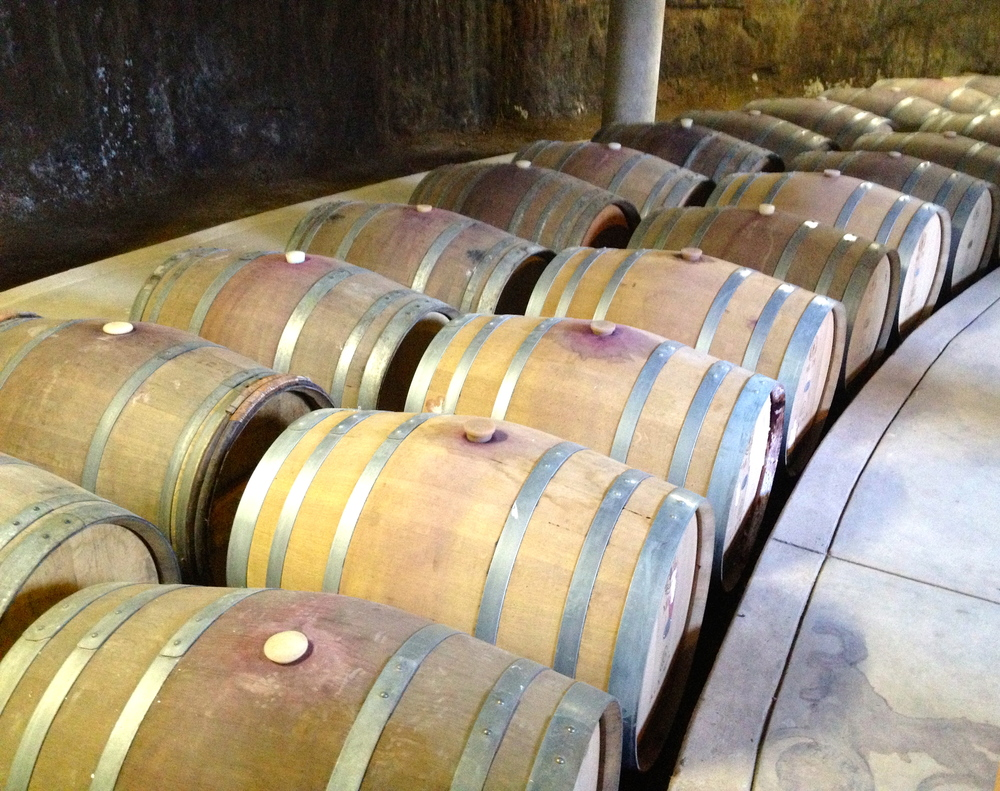 Alximia's barrel room