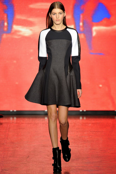 DKNY Fall 2013 Look 33.JPG