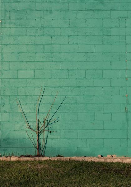 Walls-12.jpg