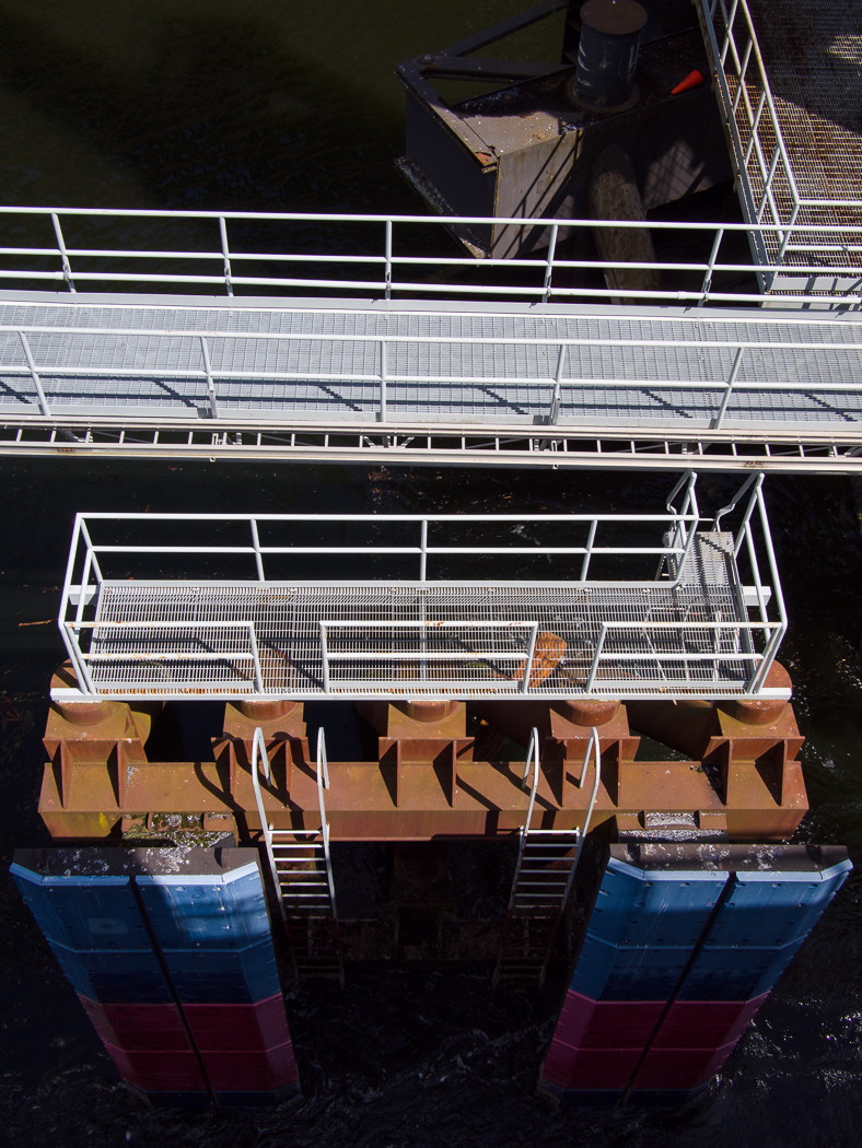 Ferry_Ride-1.jpg