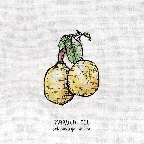 Marula.jpg