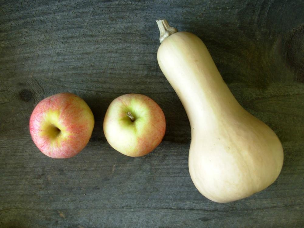 Squash & Apples 1.jpg