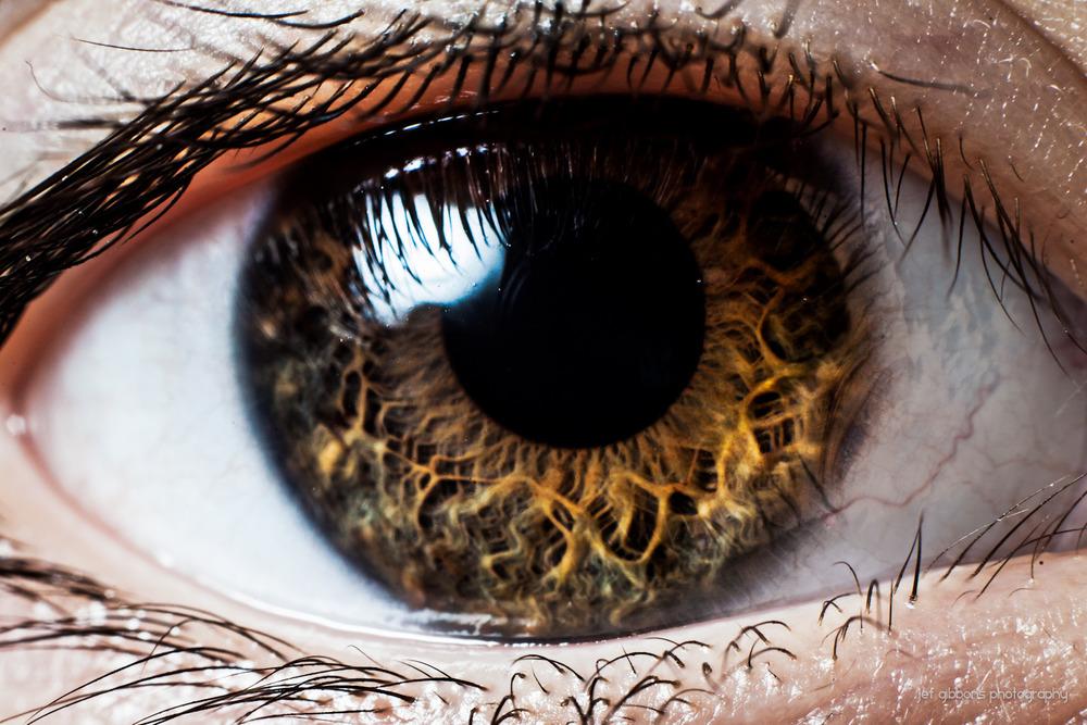 l-eye.jpg
