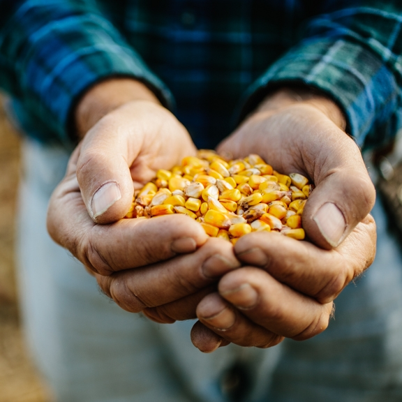 Farmers -
