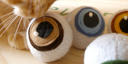 0227-catnip_eyeballs.jpg