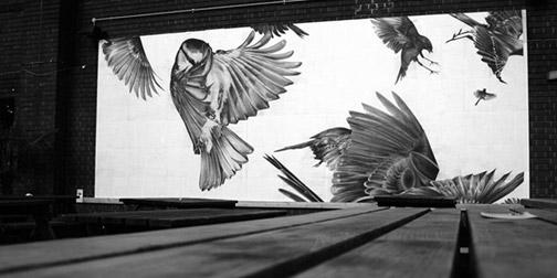 0909-chickadee.jpg